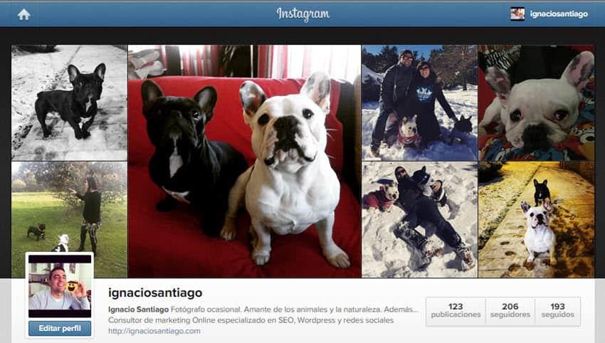 conseguir seguidores en instagram completar biografia