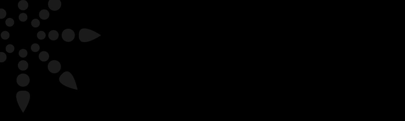 revSlideStarV2