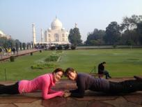 Plank in front of the Taj Mahal