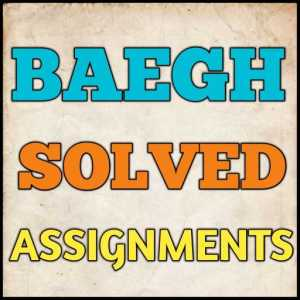 BAEGH Solved Assignment (2020-21)