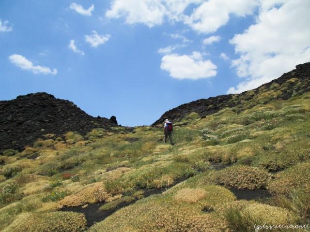 Etna, paesaggio