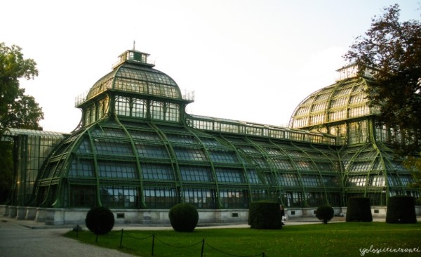 Serra delle Palme di Schonbrunn, Vienna