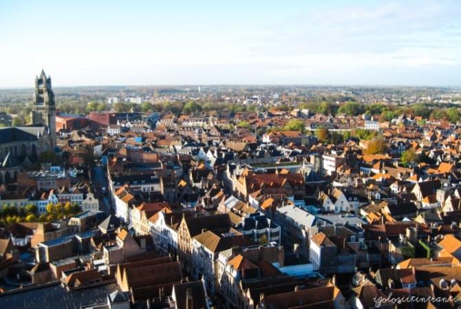Vista di Bruges dall'alto del Belfort