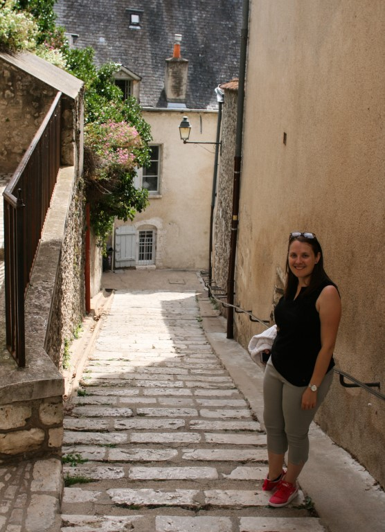 Blois, scorcio