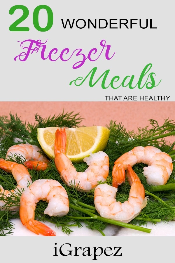 20 Wonderful Freezer Meals- [That are Healthy]