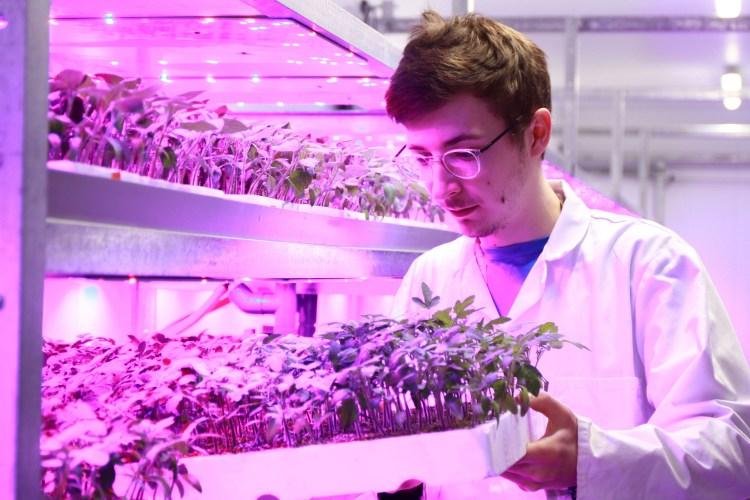 Vertical Farming Centre Reaseheath College