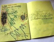 pagina-3-serpanza