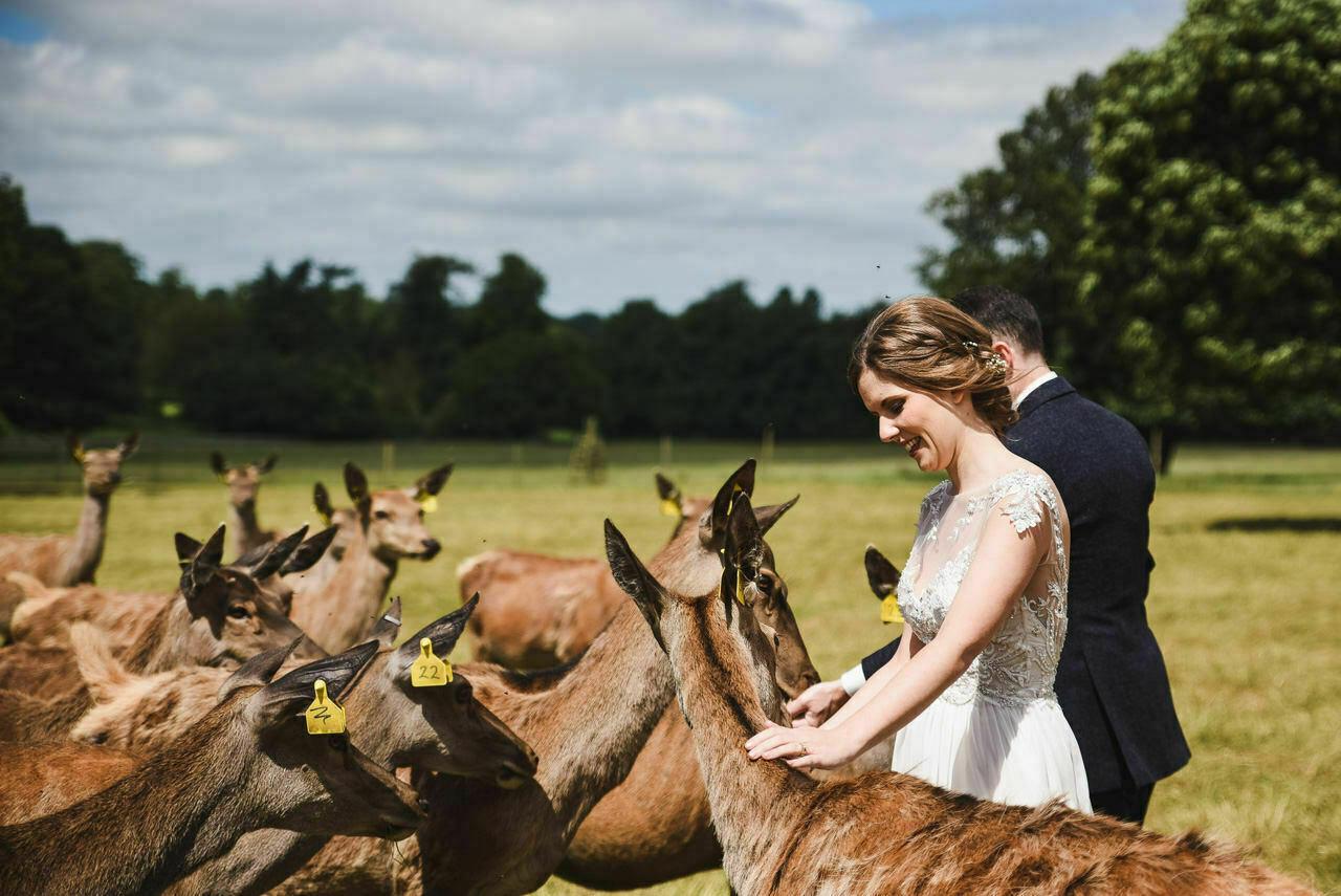 Sledmere House -Wedding  Photography Yorkshire 88