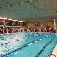 Alle zwemlessen in één overzicht kidsproof almere