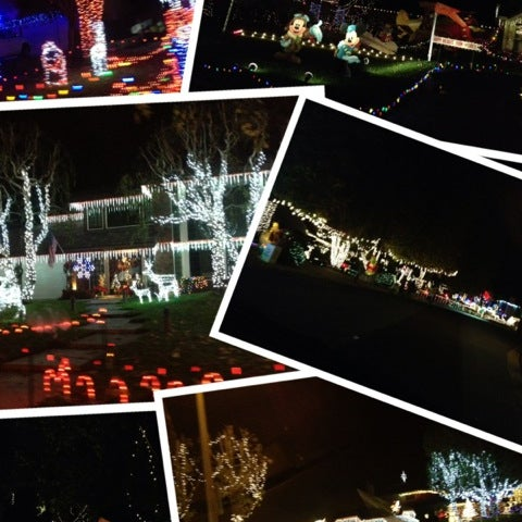 Thoroughbred Christmas Lights 16 Tips From 700 Visitors