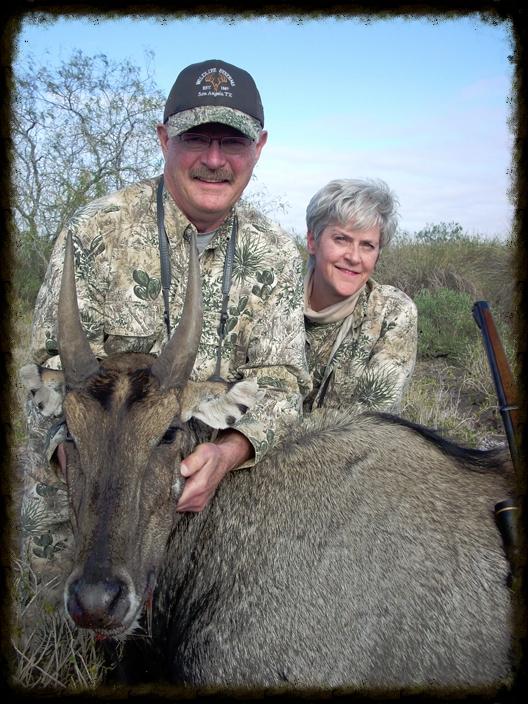 King Ranch Nilgai Hunts
