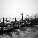 Gondolas at St Mark's Square Venice
