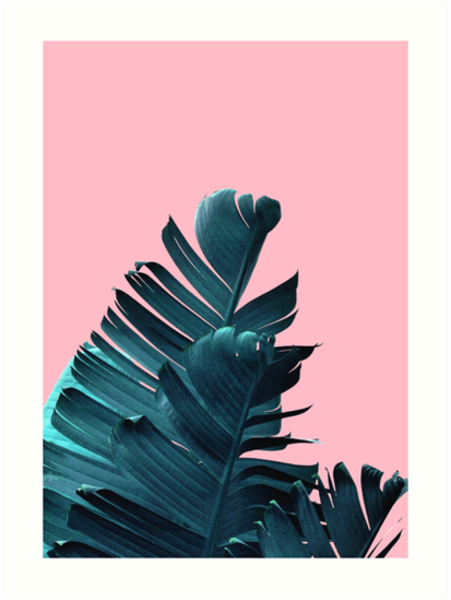 Banana Leaves Tropical Leaf Print Pink And Blue Art Print By PrintsProject Redbubble
