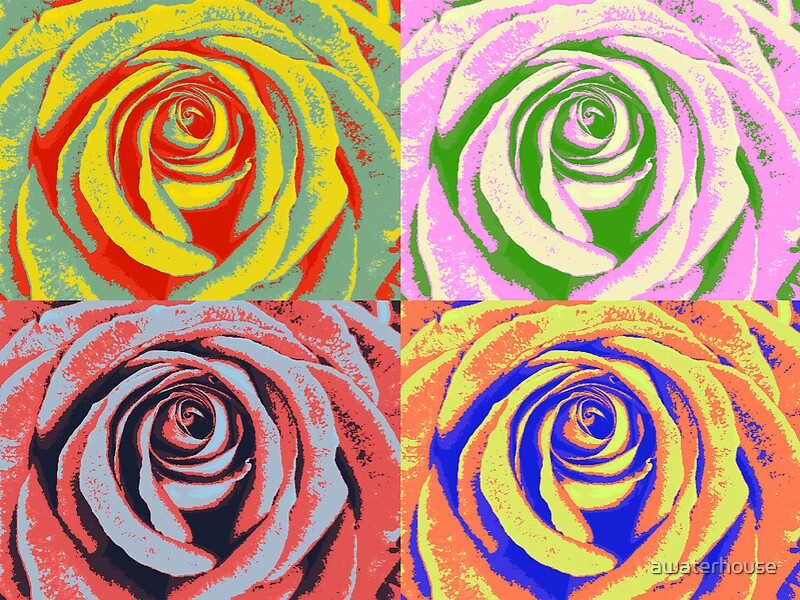 Pop Art Rose By Awaterhouse Redbubble