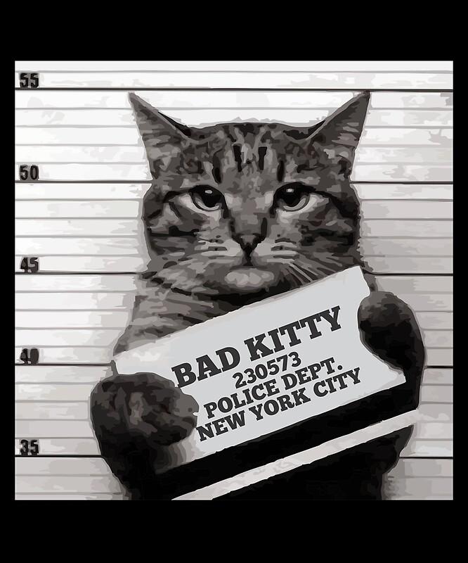 Mugshot Cat Mr Furrypants Bad Kitty By Printedkicks