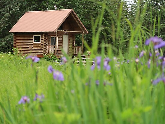 Alaskan Cabin with Irises