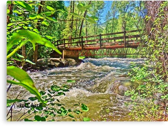 Roaring Fork River, Aspen 2 by 32DARTS