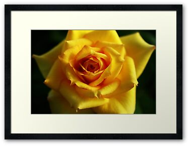 Framed Print: Yellow Lips