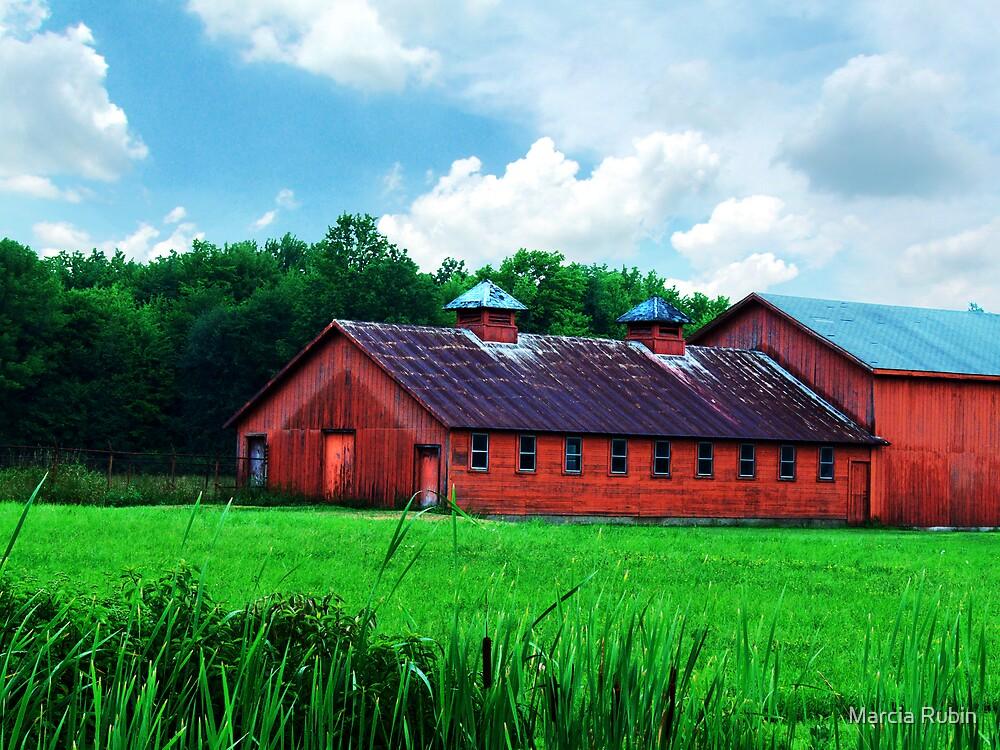 Barn Big Red