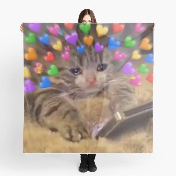 218 Best Meme Pics Images In 2020 Reaction Pictures Cute Memes Cute Love Memes