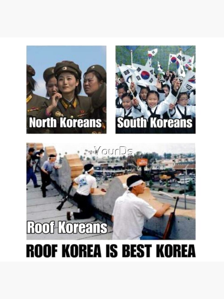 25 Best Memes About Roof Koreans Roof Koreans Memes