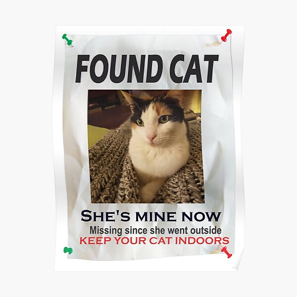 lost cat posters redbubble