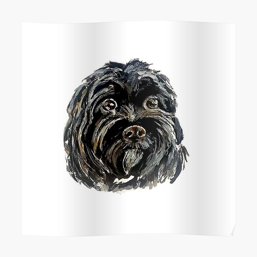 black dog poster by studiokaufmann redbubble