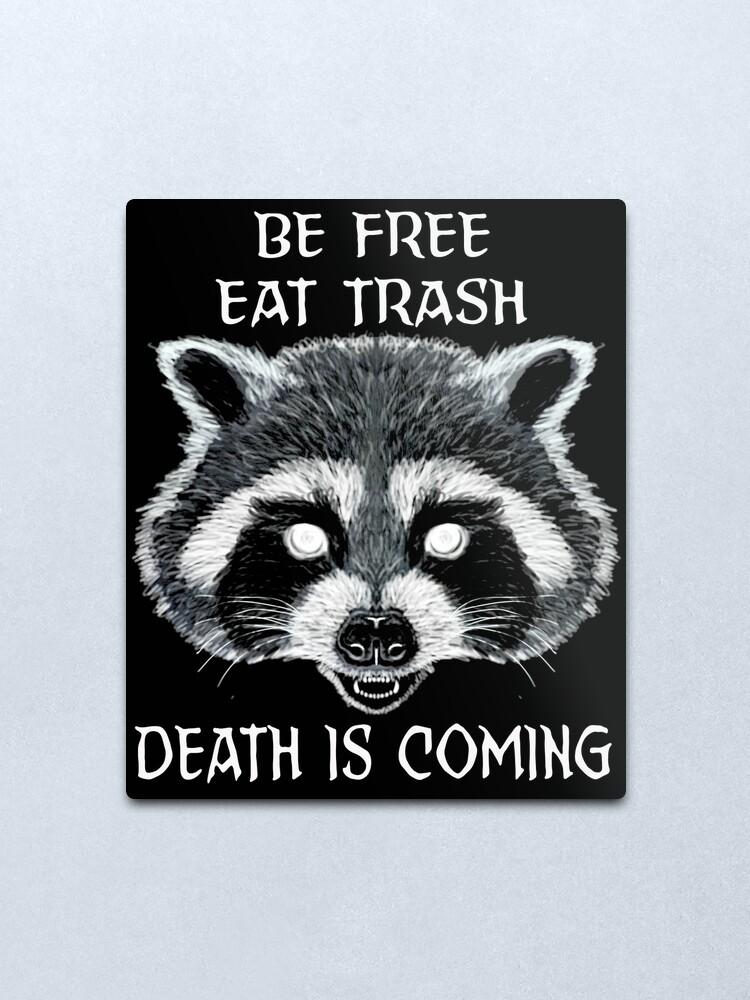 Trash Panda Meme Metal Print By Shayneofthedead Redbubble