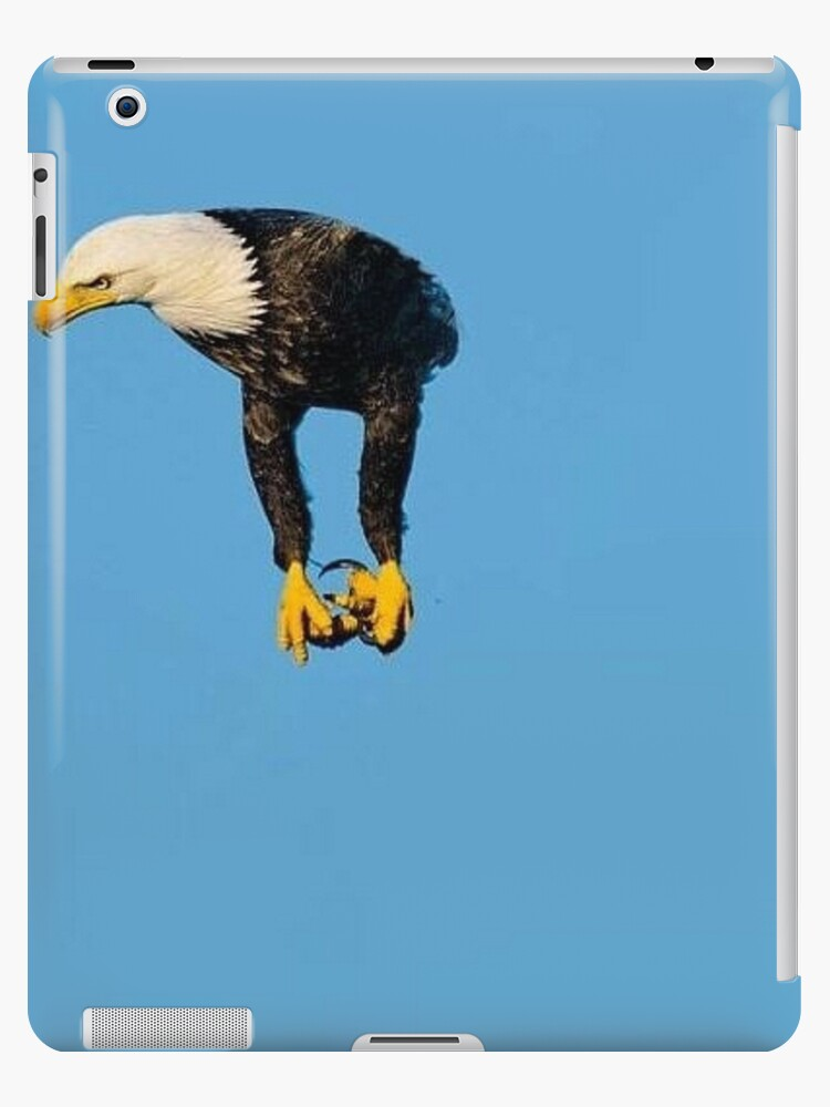Eagle Without Wings Meme Ipad Case Skin By Sp00kem Redbubble