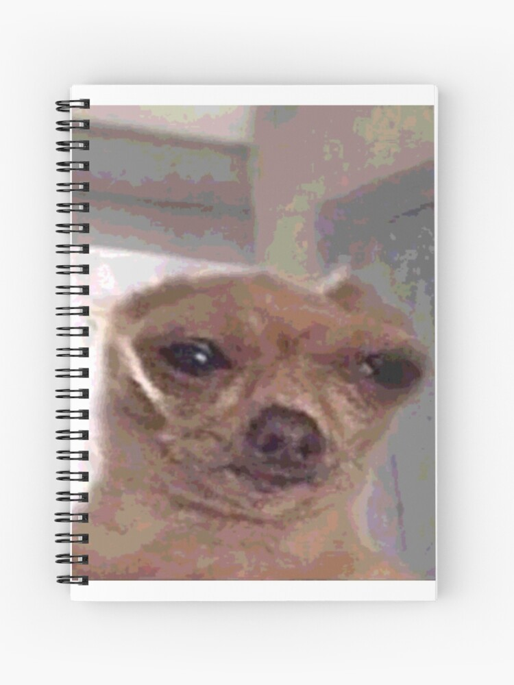 Meme Hund Spiralblock Von Katikat Redbubble