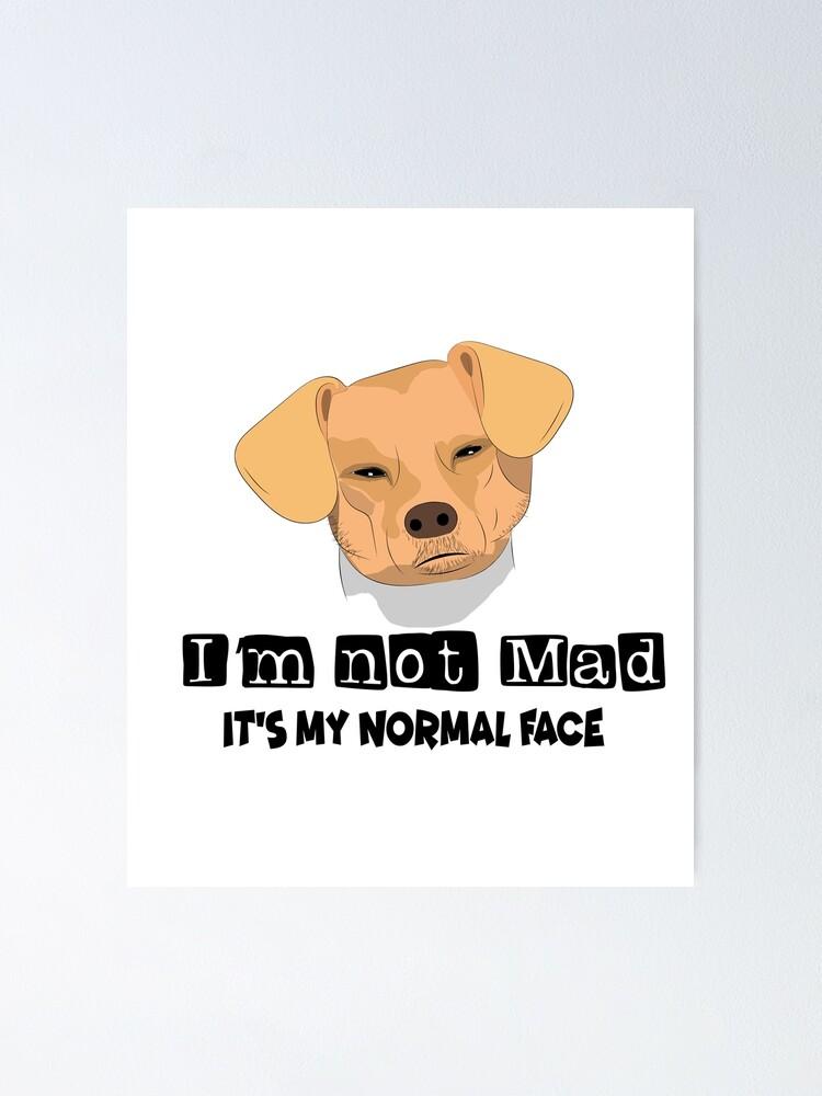 Sticker Fetter Hund Meme Redbubble