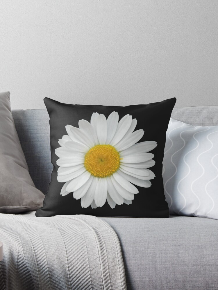 white daisy macro on black background throw pillow by tanjica redbubble