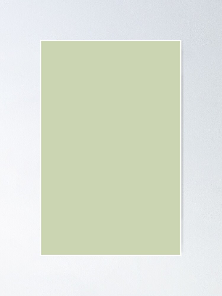 Plain Solid Color Seafoam Green For A Breezy Beach Decor And Clothing Aesthetic Poster By Ozcushions Redbubble