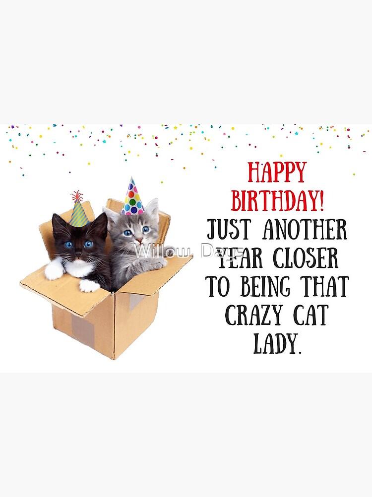 Katzen In Box Katzen Geburtstagskarte Cat Lady Geburtstagskarte Meme Grusskarten Grusskarte Von Avit1 Redbubble