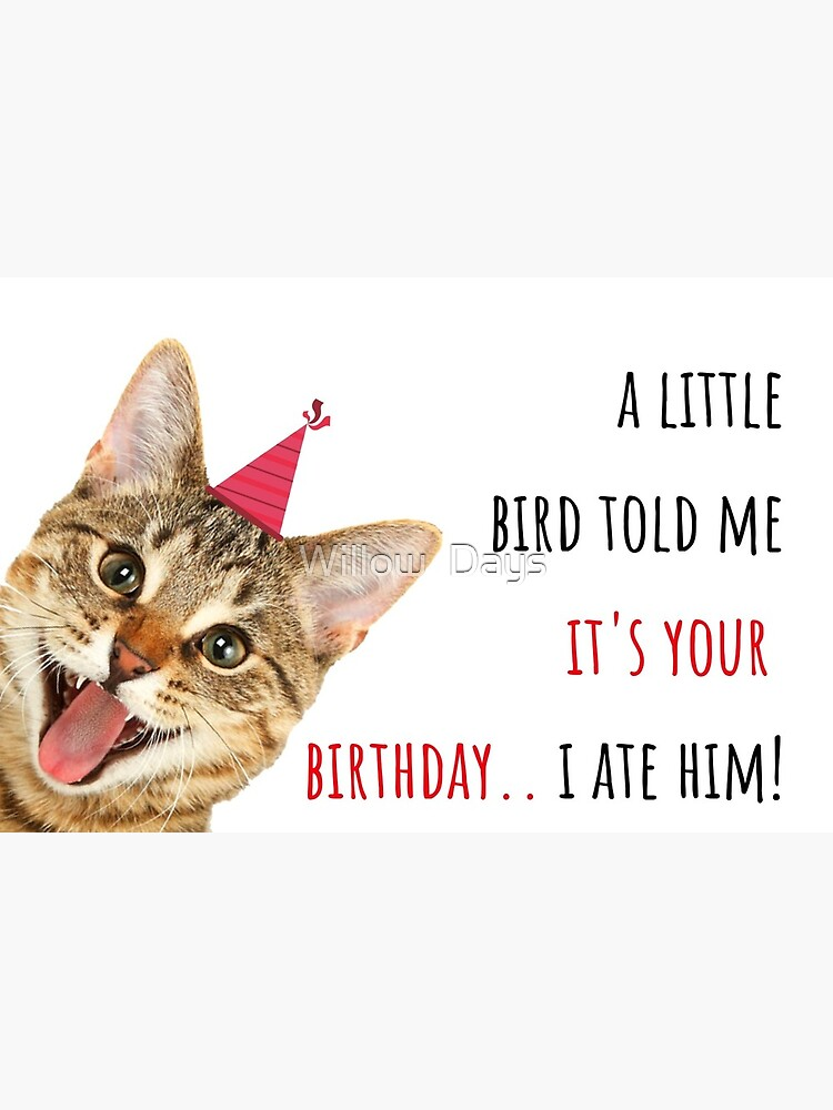 Cat Meme Birthday Card Sticker Mug Crazy Cat Lady Birds Party Ideas Gifts Presents Good Vibes Humor Humour Banter Puns Greeting Card By Avit1 Redbubble