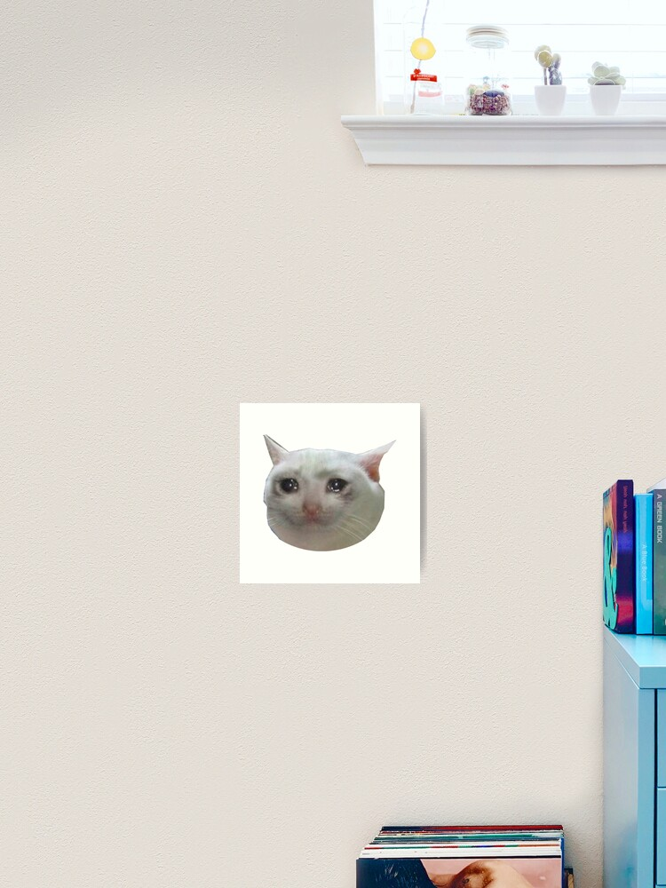 Cat Crying Meme Galeriedruck Von Amemestore Redbubble