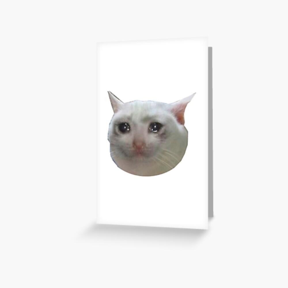 Catto Dank Meme Cat Cry Sad Kitten Hd Png Download Kindpng