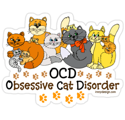 OCD Obsessive Cat Disorder Funny Cat Lovers Stickers