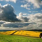 Hallet Fields by pablosvista2