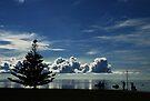 Distant Horizon by Stephen Mitchell