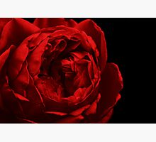 Dark Red Photographic Print by Stephen Mitchell
