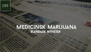 medicinsk marijuana nyheter bolag investera aktier börsen
