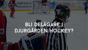Bli delägare i Djurgården Hockey? Nej tack trots möjliga utdelningar