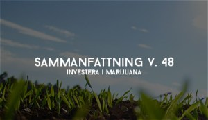 investera i marijuana