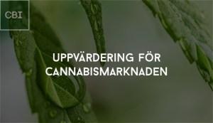 Uppvärdering för cannabismarknaden