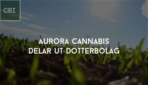 Aurora Cannabis delar ut dotterbolag