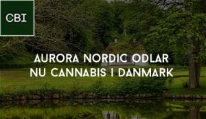 Aurora Nordic odlar nu cannabis i Danmark