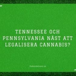 Tennessee och Pennsylvania näst att legalisera cannabis?