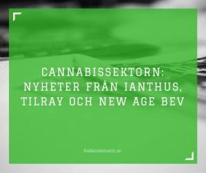 Cannabissektorn: Pressmeddelanden från iAnthus, Tilray och New Age
