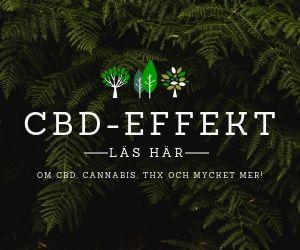 Vad är CBD? Läs om cbd-produkter på cbd-effekt.se